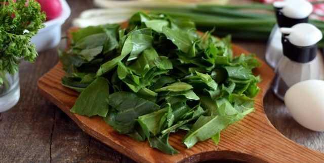 салат из щавеля свежего рецепты