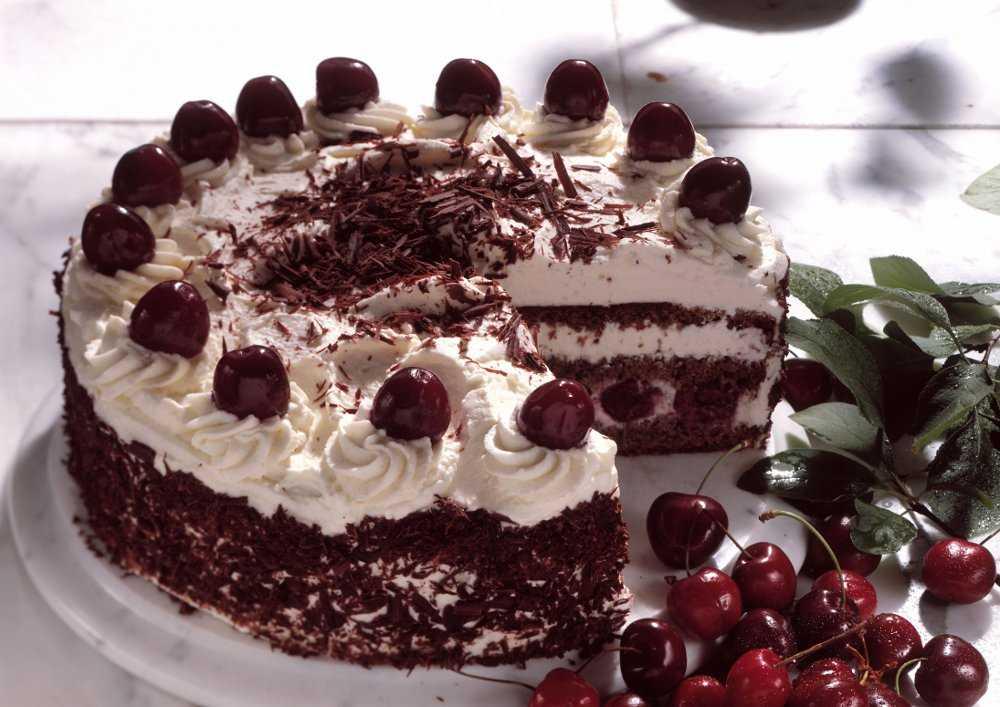 Рецепт сметанного торта с вишней
